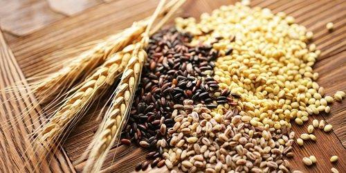 Ngũ cốc nguyên hạt hay còn có các tên gọi khác là ngũ cốc nguyên cám
